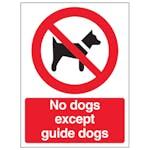 Dog Prohibition Signs