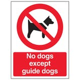 Dog Prohibition Signs