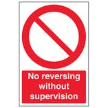 No Reversing Without Supervision - Portrait