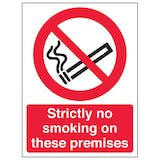 Eco-Friendly Strictly No Smoking On These Premises - Portrait