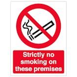 Strictly No Smoking - Window Sticker