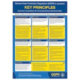 GDPR In Practice Poster - Key Principles