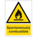 Spontaneously Combustible - Portrait