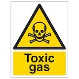 Toxic Gas - Portrait