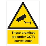 Protected By Video Surveillance - Portrait