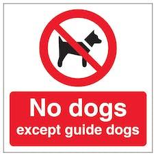 No Dogs Automatic Door