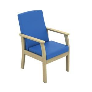 Patient Low Back Arm Chair