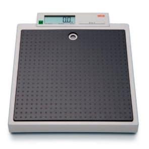 Seca 877 Flat Scales